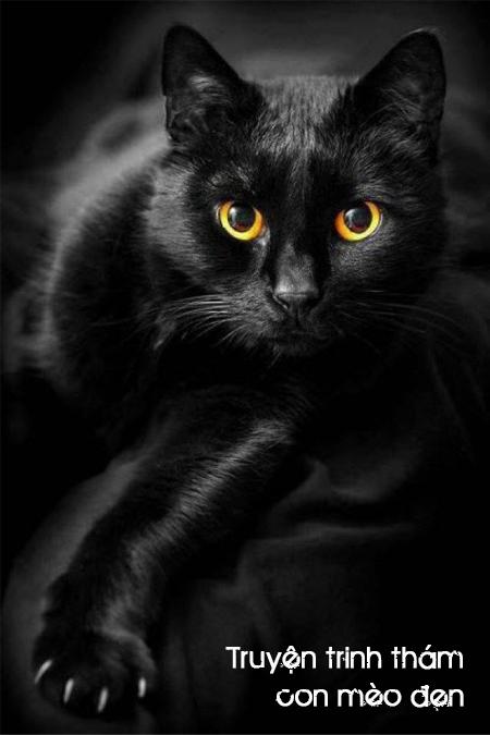 Con mèo đen - truyện trinh thám