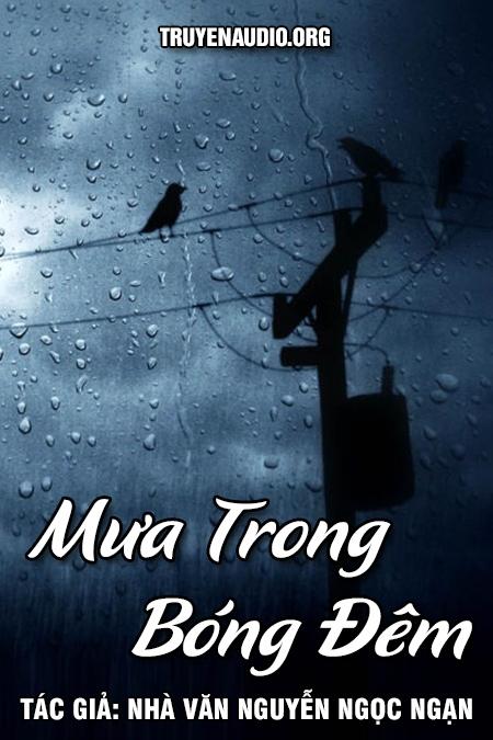 Mưa trong bóng đêm - Nguyễn Ngọc Ngạn